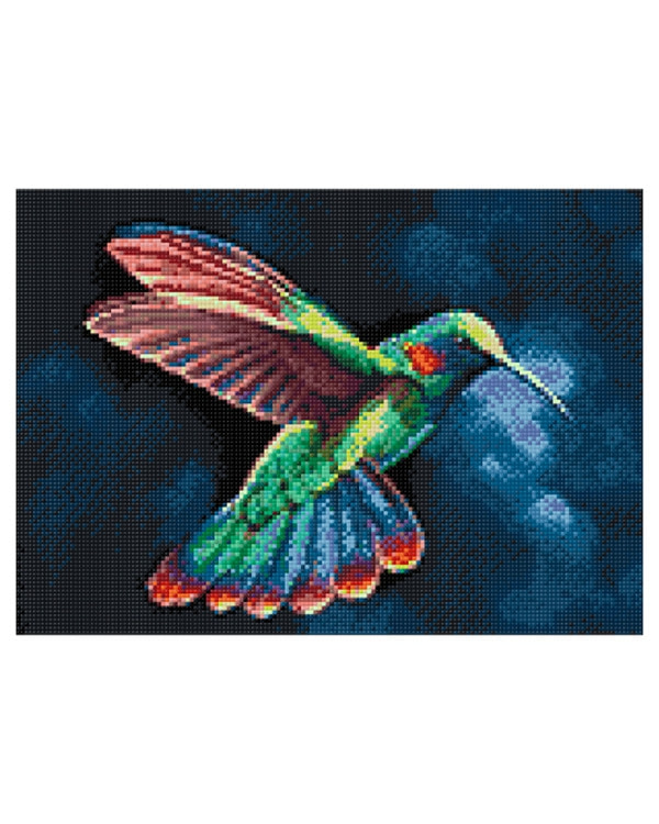 Diamond painting Kolibri