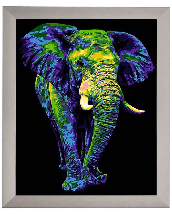 Paint By Numbers Elefant